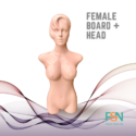 Female Body form with head (per piece)