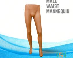 Male Waist Mannequin (per piece)